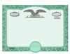 Stock Certificates Eagle_C with No Wording on the Back