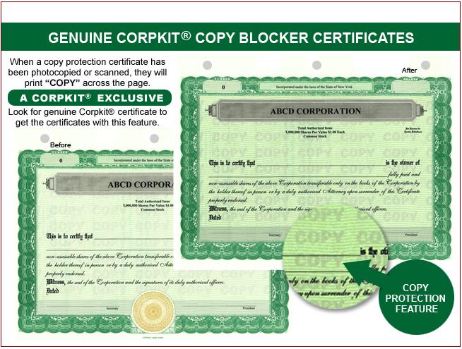 Stock CertificatesLLC Certificates Share Certificates Goes – Blank Share Certificate
