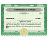 Custom Stock Certificates 1 Class Multi-Class Standard Certificate