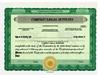 Custom Stock Certificates 3 Class Multi-Class Standard Certificates