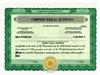 Custom Stock Certificates 4 Class Multi-Class Standard Certificates