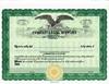 Custom Stock Certificates 1 Class Multi-Class Eagle Certificates
