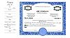1 Class Side stub Multi-Class Certificates