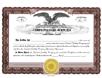 Electronic Digital Limited Liabilty Corporate Kit with Interest Certificates