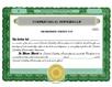 Electronic Digital Partnership Certificates
