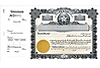 Goes 265 Side Stub Stock Certificates