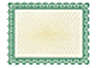 Goes 3461 Blank Stock Certificates