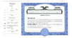 CorpKit Custom Side Stub SS2 LLC Units Certificates