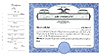 CorpKit Custom  Eagle Side Stub SS2 Single Class Stock Certificates