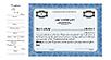 CorpKit Custom Standard Side Stub SS4 Single Class Stock Certificates