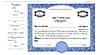 CorpKit Custom Side Stub SS5 Single Class Stock Certificates